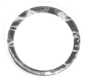 Ecotec Rear Main Seal 12591866